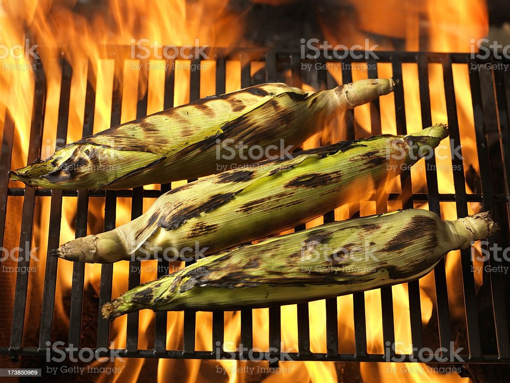Corn on the BBQ royalty-free stock photo