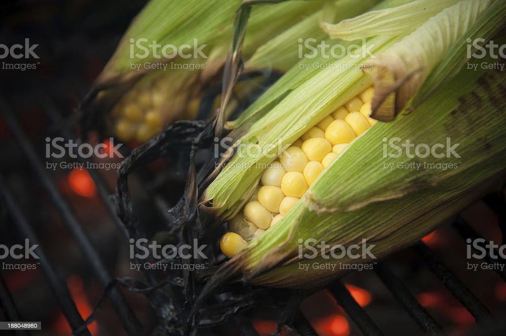 Corn on the cob being grilled stock photo