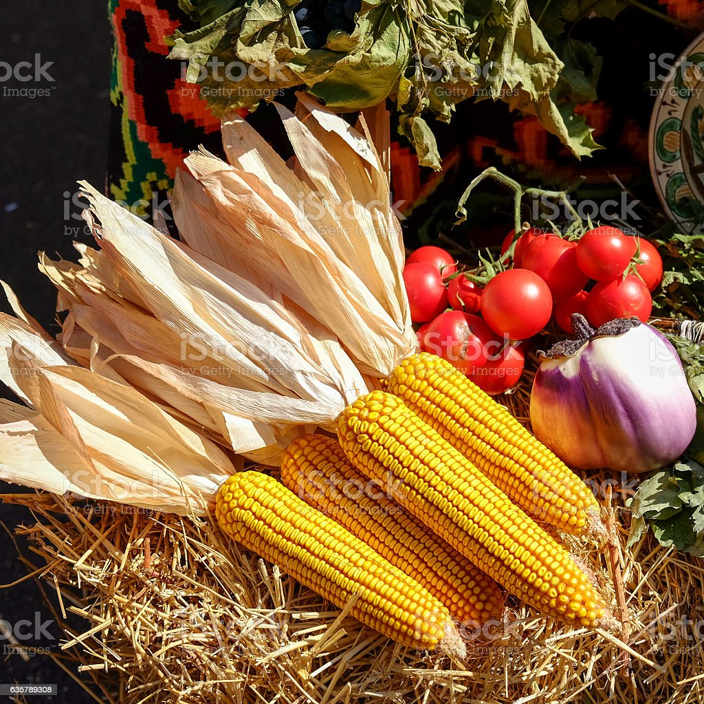 Corn on the cob, dehidratated with tomatoes and onions, traditio stock photo