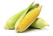 Corn on the cob kernels peeled isolated on white background