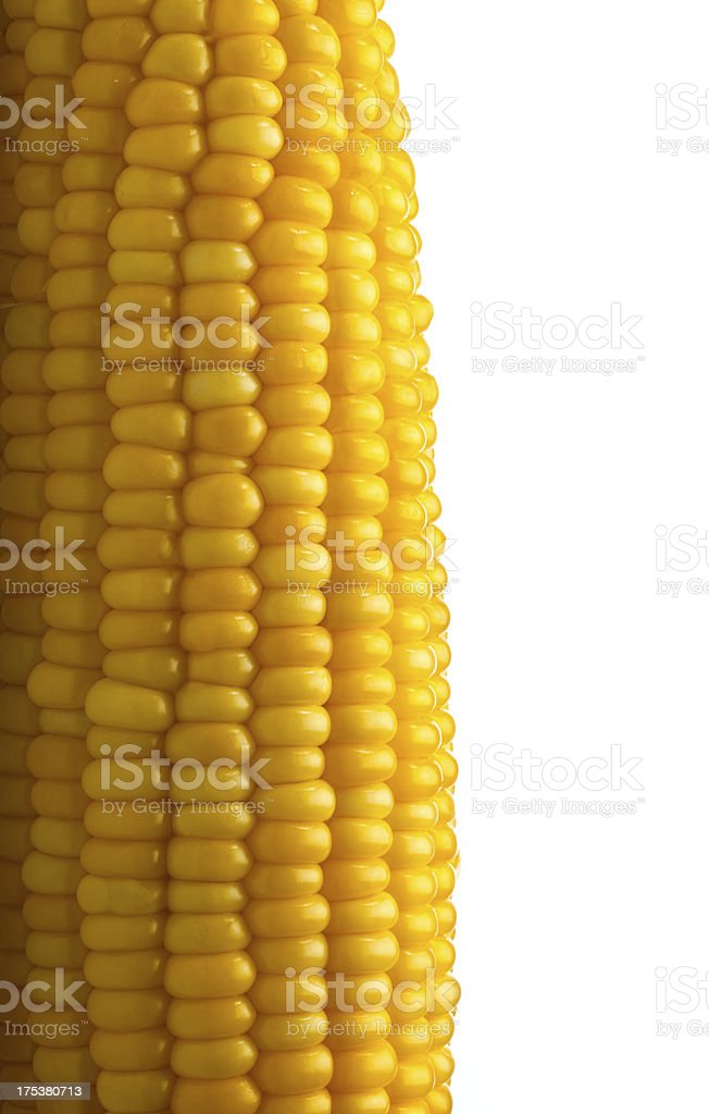 Corn on the Cob Macro royalty-free stock photo