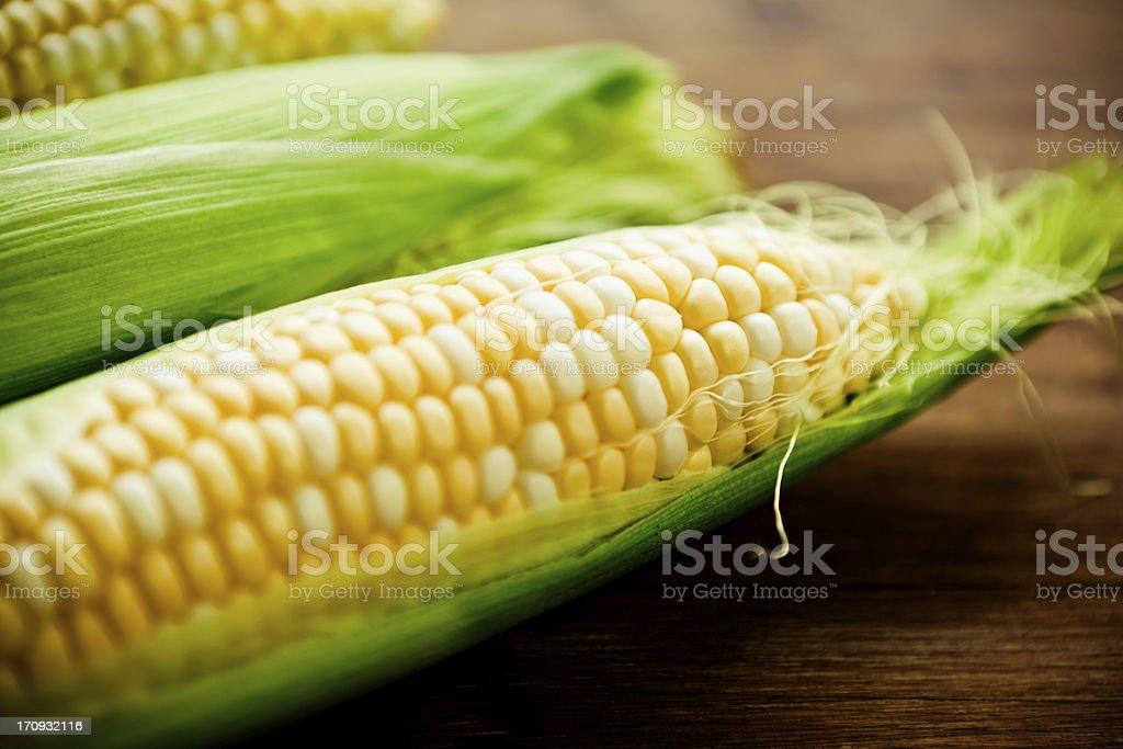 Mazorca de maíz - foto de stock