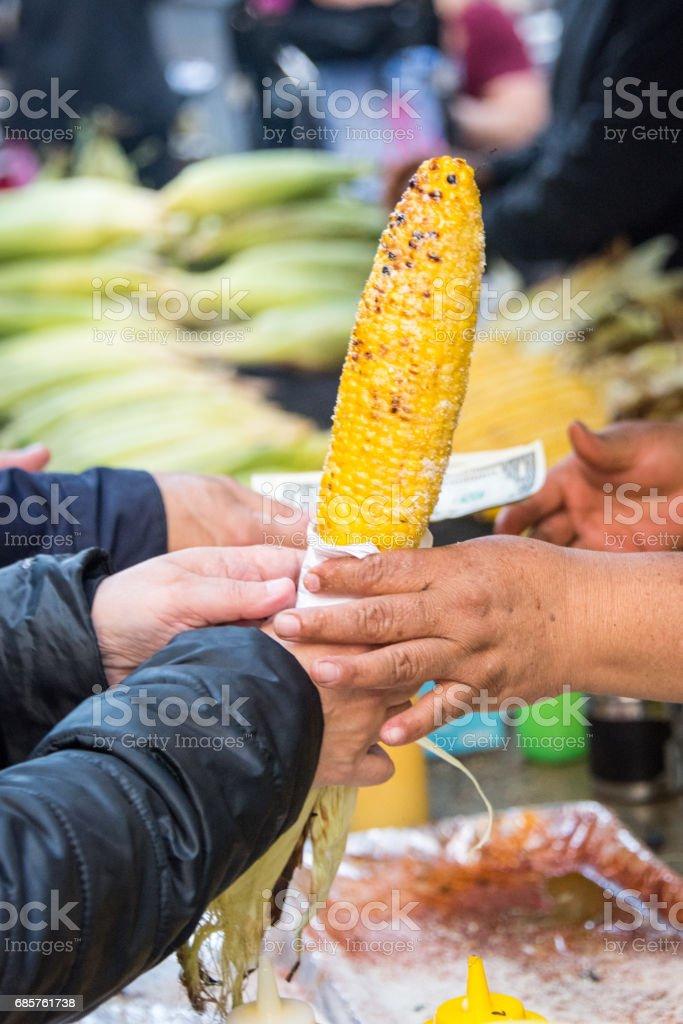 Maïs op de kolf royalty free stockfoto