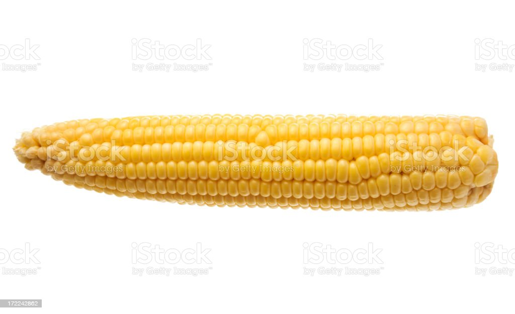 Corn on the Cob, Sweetcorn Crop Vegetable Isolated on White royalty-free stock photo