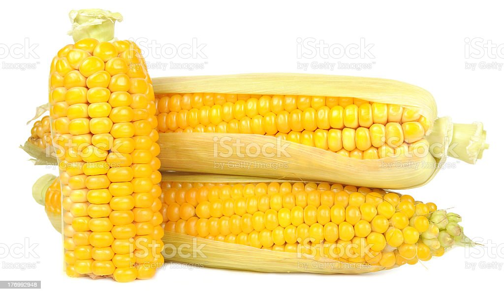 Corn on the Cobs stock photo