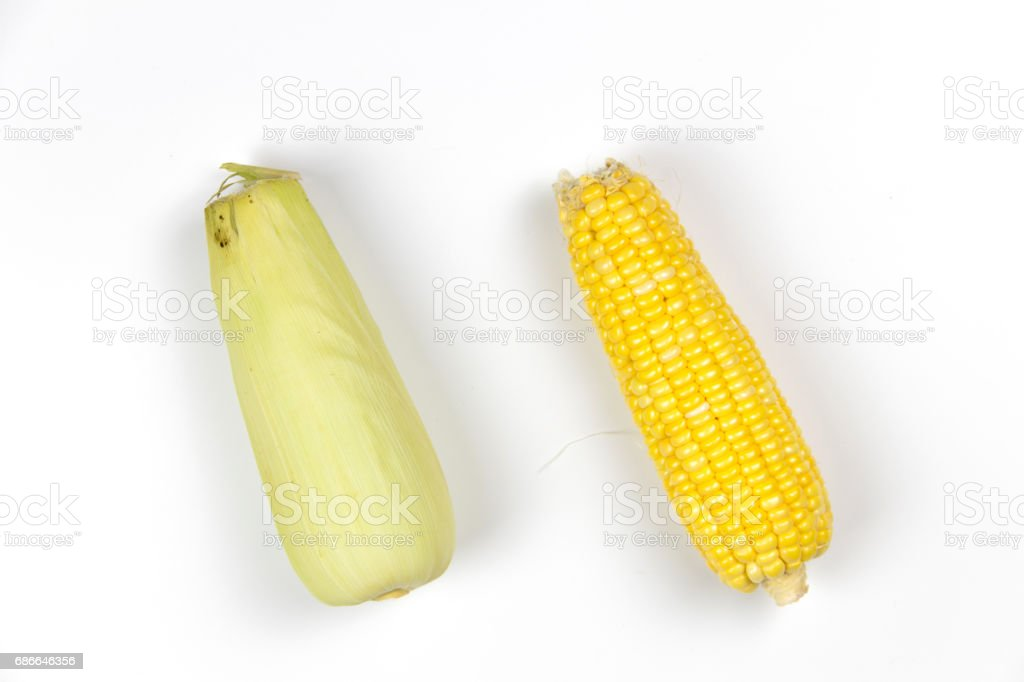 Corn on white background isolated photo libre de droits