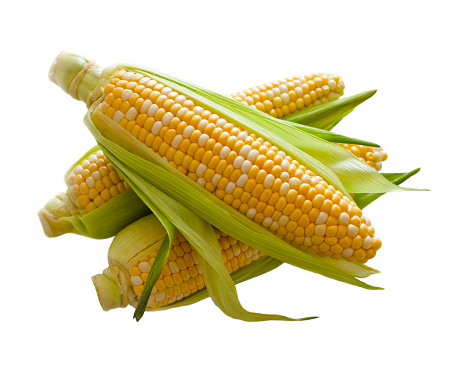 Ear of corn with husk. Isolated on white.