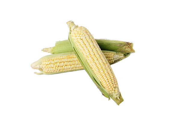 Corn Corn sweetcorn stock pictures, royalty-free photos & images