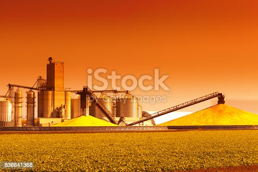 A corn processing plant in the fall during harvest time at sunset. Corn is harvested, collected and processed. Stored at the silos and storage facility ready for shipping.
