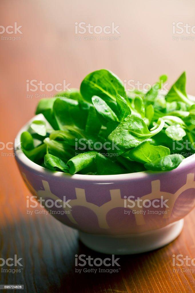 corn salad, lamb's lettuce in ceramic bowl stock photo
