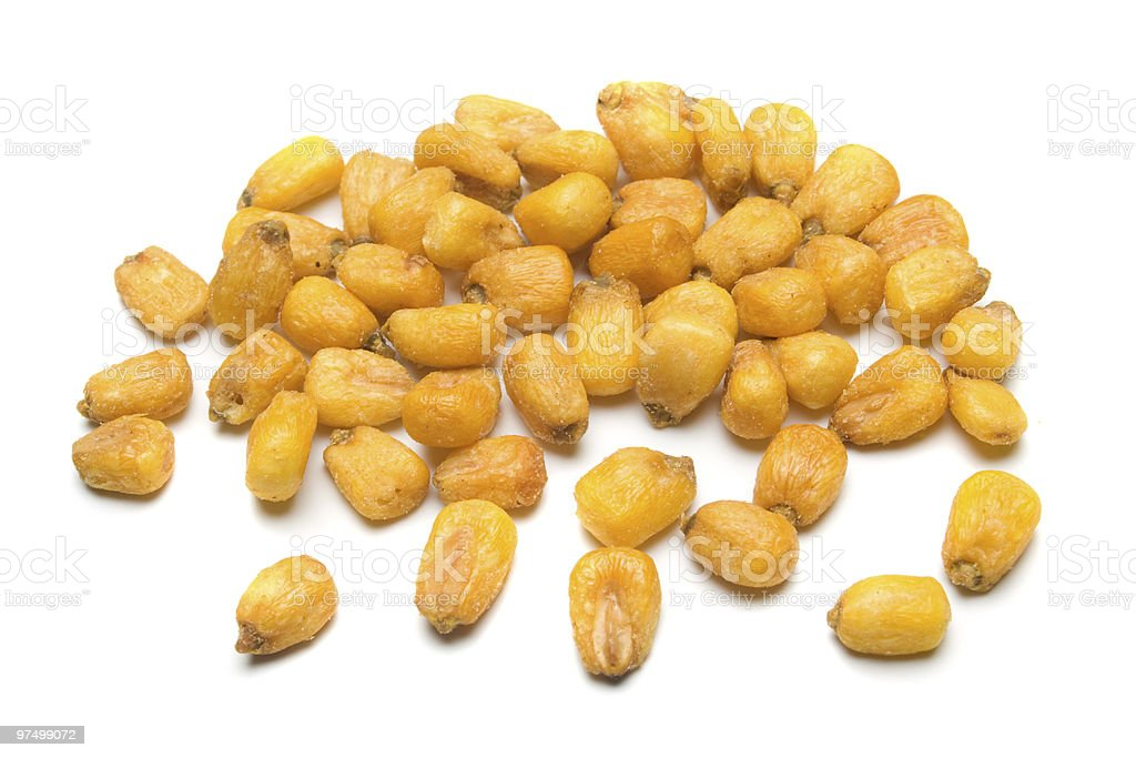 Corn seed royalty-free stock photo