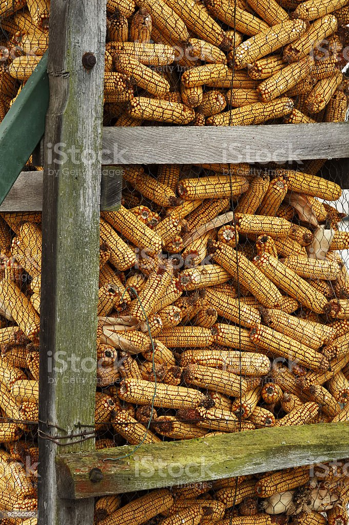 Corn store 2 royalty-free stock photo