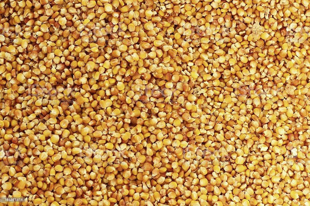 corn texture royalty-free stock photo