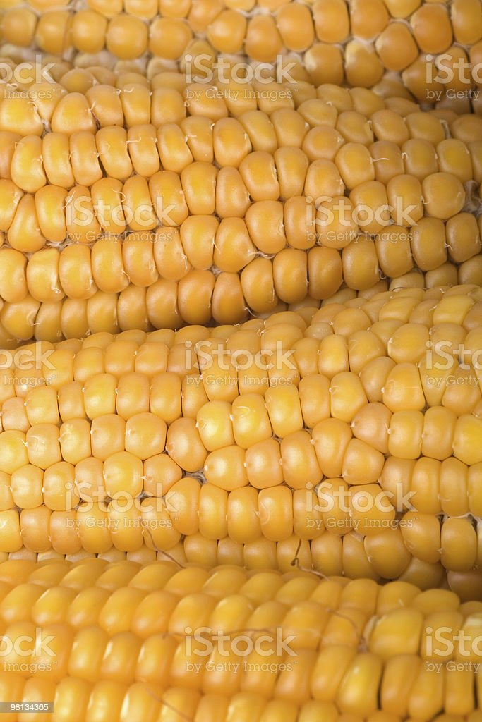 Corn texture royalty-free stock photo