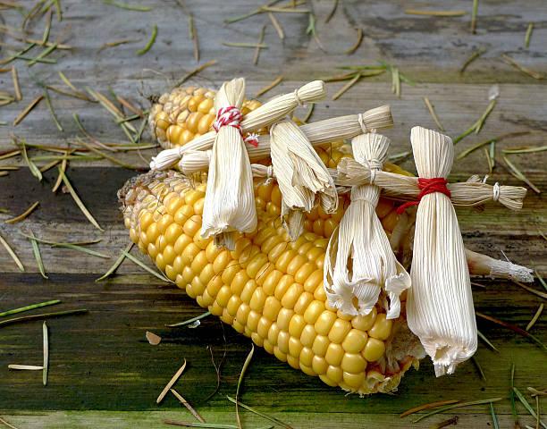 Corn with Cornhusk Dolls stock photo