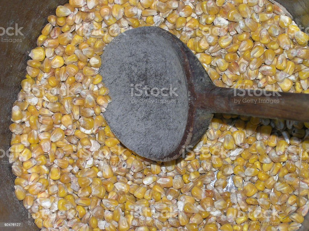corn with the spoon royalty-free stock photo