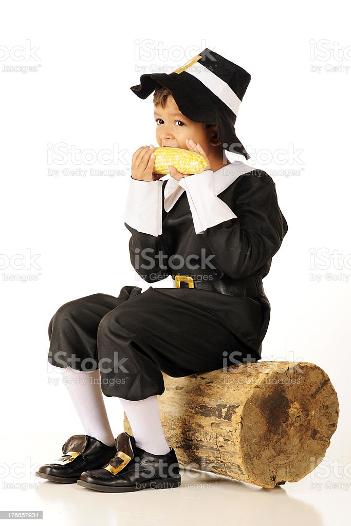 Corn-Eating Pilgrim stock photo