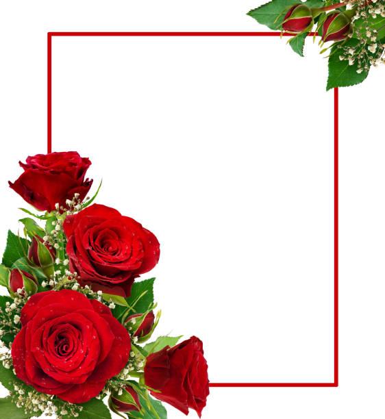 Corner arrangements with red roses and gypsophila flowers and buds picture id933399400?b=1&k=6&m=933399400&s=612x612&w=0&h=kvuztlvrq0tsisvdvi2tktuszaucpk5oz5ynr5ttujo=