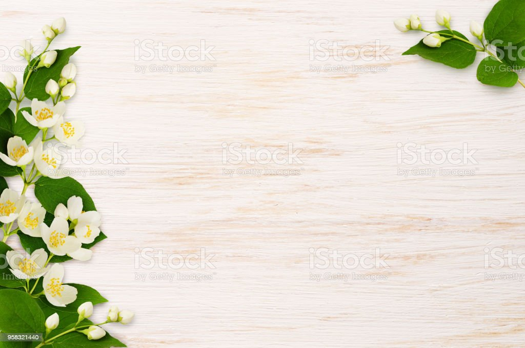 Corner compositions with jasmine flowers on wood stock photo