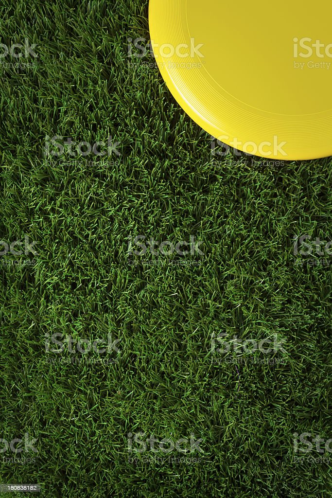 Corner Frisbee on Green Grass royalty-free stock photo