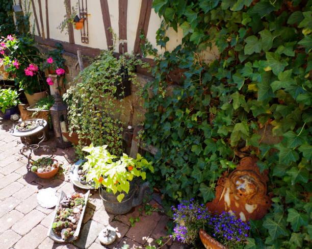 ecke im bauerngarten mit schöner bepflanzung und dekoration - rustikaler hinterhof stock-fotos und bilder