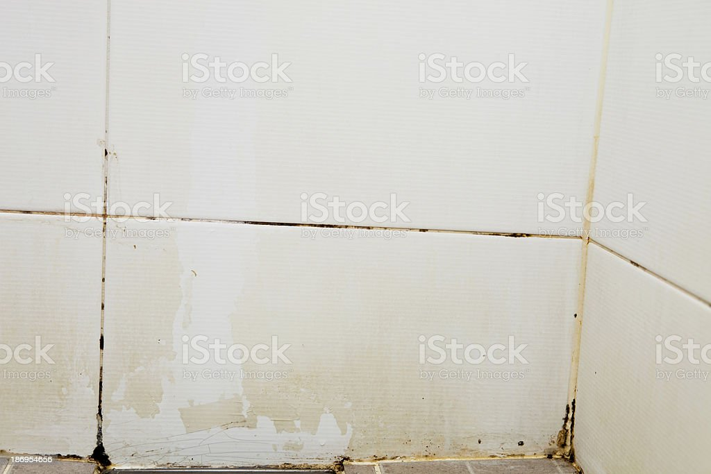 corner mold royalty-free stock photo