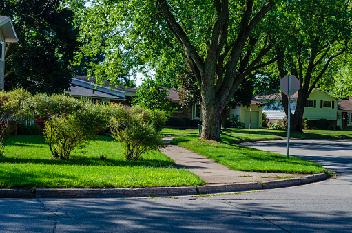Corner of a curving suburban tree lined shady street in the summer