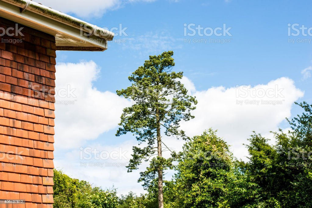 Corner of a Tiled House Against a Blue Sky stock photo