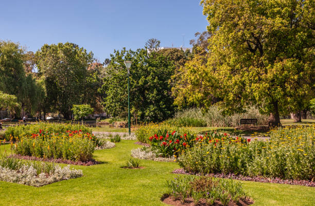 Corner with flowers and plants in Carlton Gardens, Melbourne, Australia. stock photo