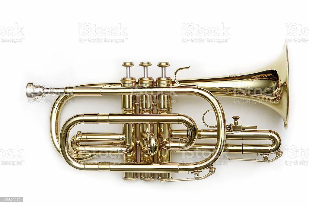 cornet isolated over white royalty-free stock photo