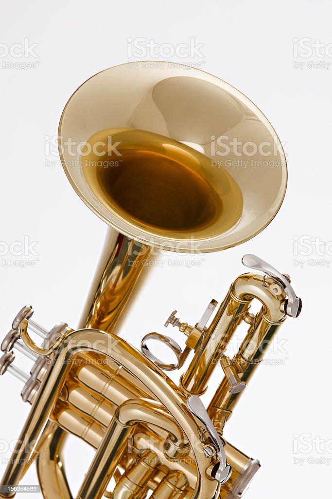 Cornet Trumpet Isolated on White royalty-free stock photo