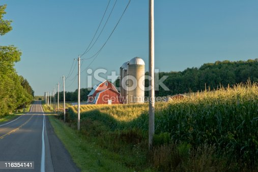 Cornfield and Red Barn at Dawn in Summer with line of telephone poles and road