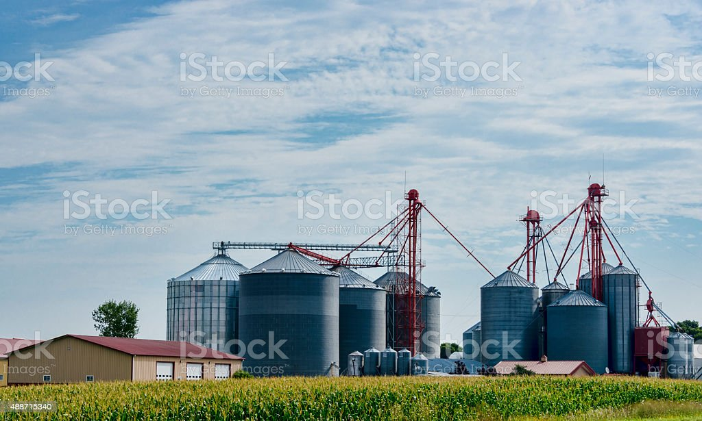 Xxxl Cornfields And Grain Silos In The Midwest Stock Photo