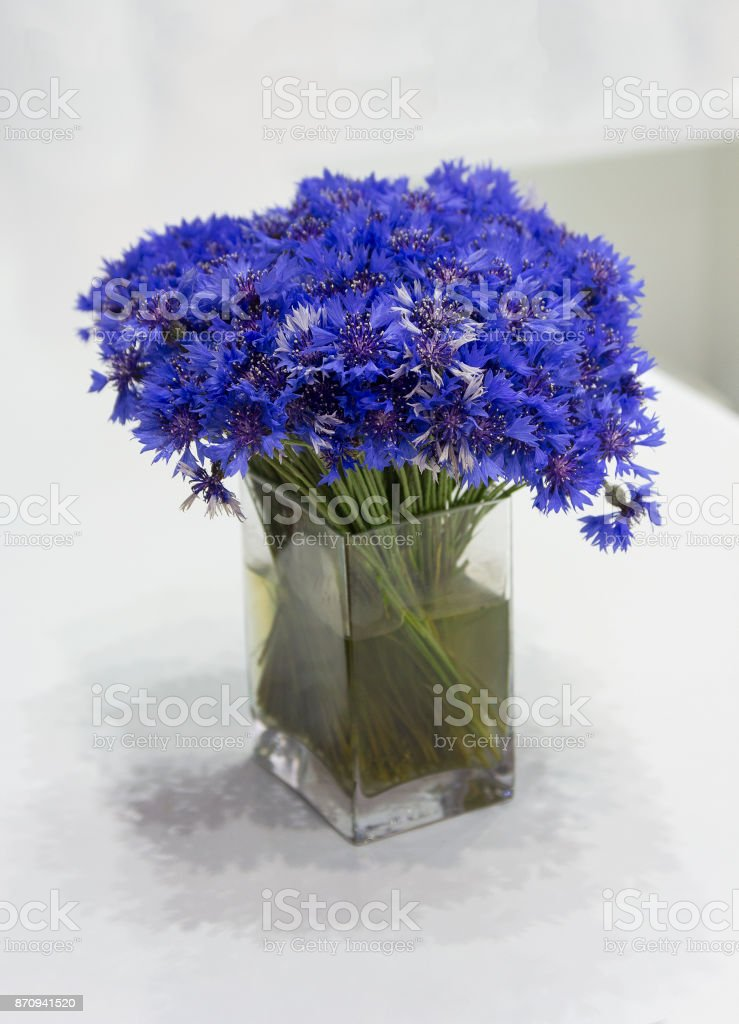 Cornflowers in a glass jar stand on the table. Flowers stock photo