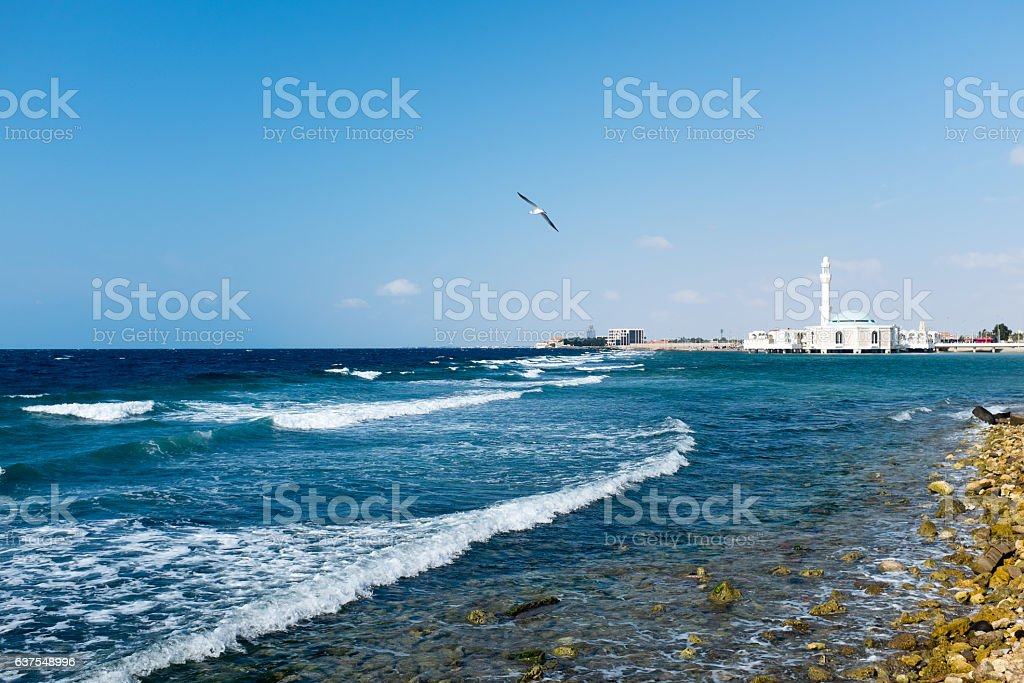 Corniche of Red Sea, Jeddah with Mosque and Seagull stock photo