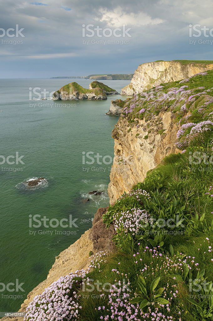 Cornish Coast stock photo