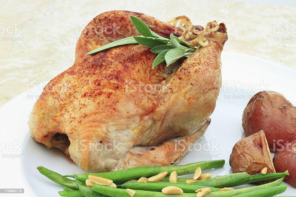 Cornish Hen stock photo