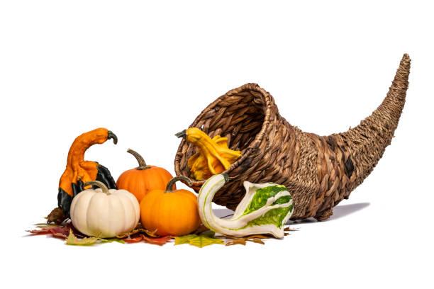 Cornucopia & Gourds stock photo
