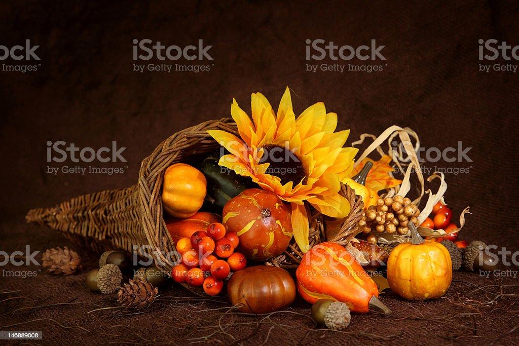 Cornucopia with pumpkins and fall sunflower stock photo