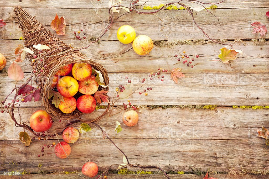 Cornucopie Apples and Autumn Leaves on Old Rustic Wood Background stock photo