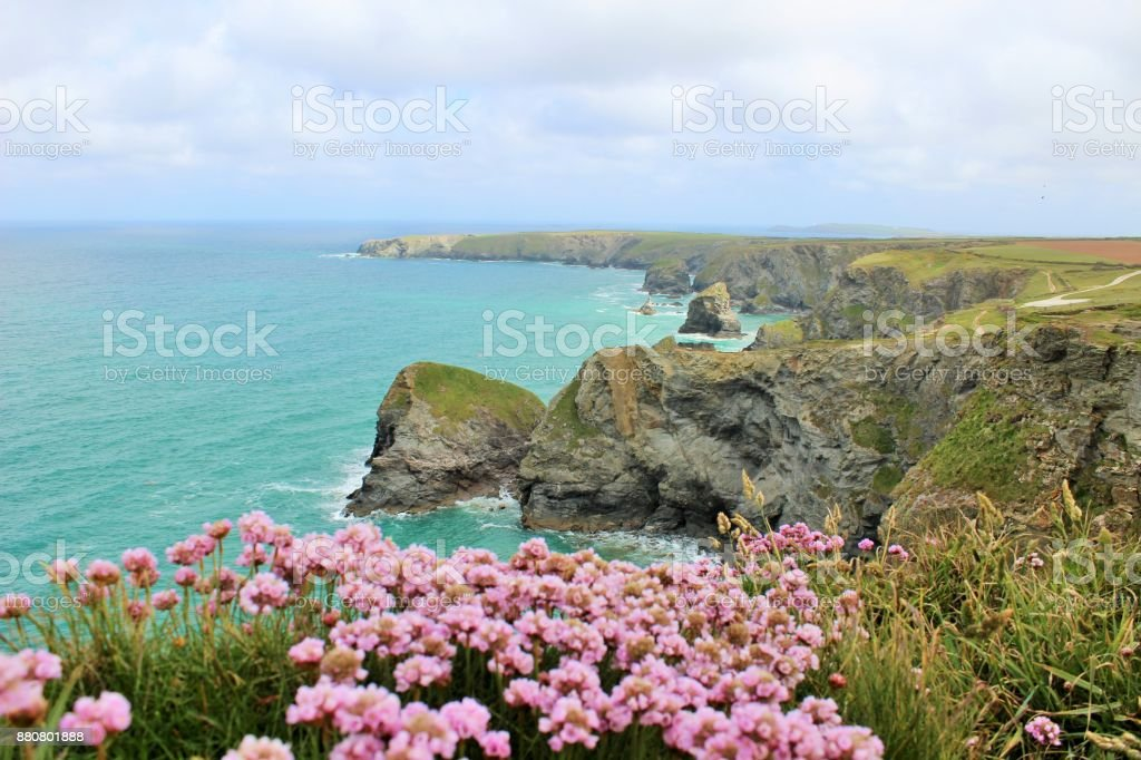 cornwall in summer stock photo