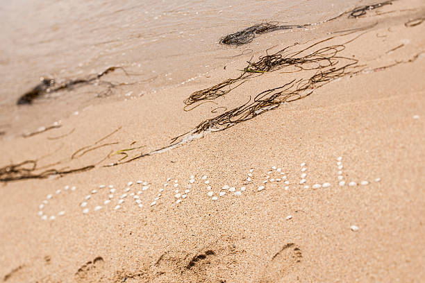 cornwall, spelt with seashells on a cornish beach. - cornwall stock photos and pictures