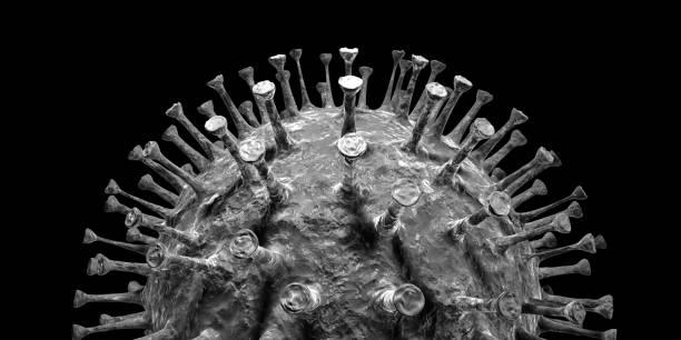 Corona virus Cell magnified 3D stock photo