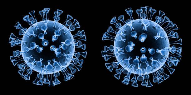 coronavirus cell or covid-19 cell x-ray stock photo
