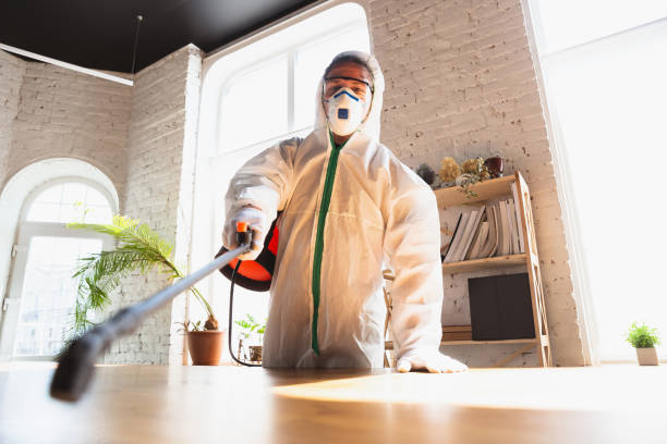 Coronavirus Pandemic. A disinfector in a protective suit and mask sprays disinfectants in the house or office stock photo