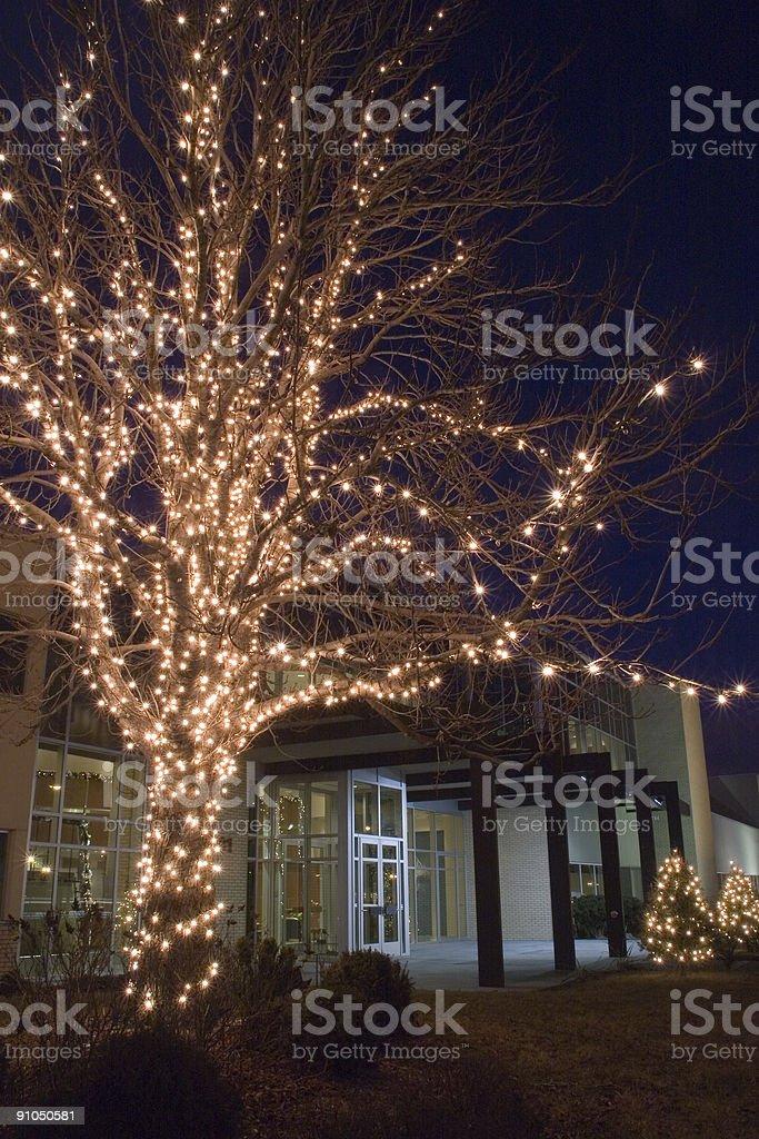 Corporate Christmas royalty-free stock photo