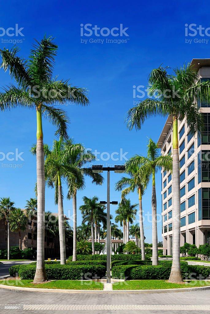corporate miami royalty-free stock photo