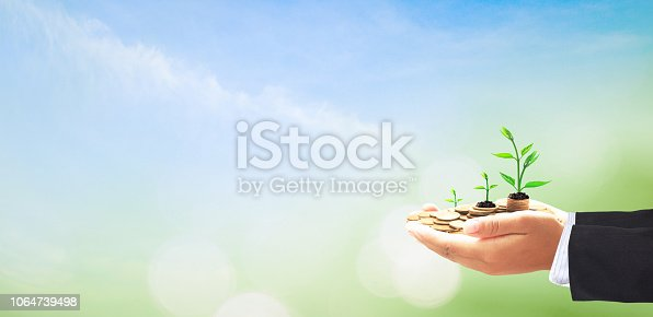 Businessman hands holding stacks of golden coins and growth tree on blurred green nature background