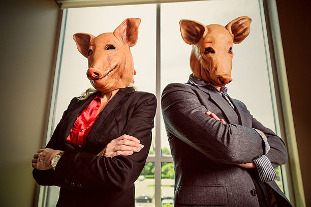 https://media.istockphoto.com/photos/corporate-swine-picture-id155600420?k=6&m=155600420&s=612x612&w=0&h=EIWGWHvl6B1YGS0XkEwHWu4zn_hjwi8dnU4GmIaEy0A=