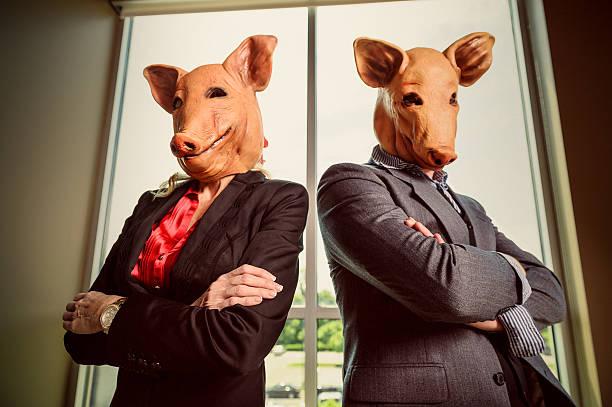 https://media.istockphoto.com/photos/corporate-swine-picture-id155600420?k=6&m=155600420&s=612x612&w=0&h=EIWGWHvl6B1YGS0XkEwHWu4zn_hjwi8dnU4GmIaEy0A=